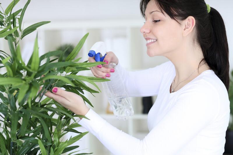 девушка поливает цветок